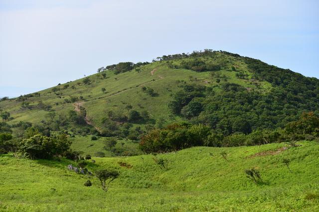 画像2: お花探しからクライミングまで、多様な山登りを楽しめる「鈴鹿山脈」へ