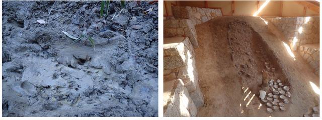 画像: 瀬戸物に使われる粘土が採れる場所