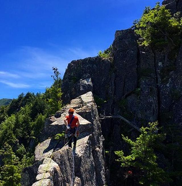 画像: 【登山の旅】山の自然観察 山の樹木の見分け方