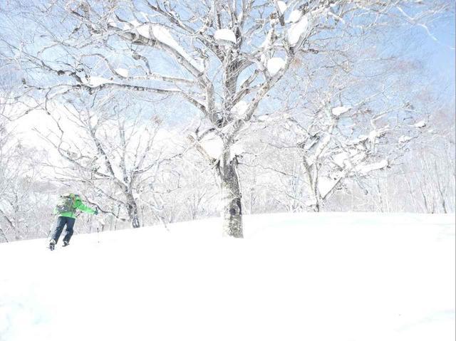 画像: ❄️一面の雪景色を歩こう❄️スノーハイキングの魅力ご紹介!