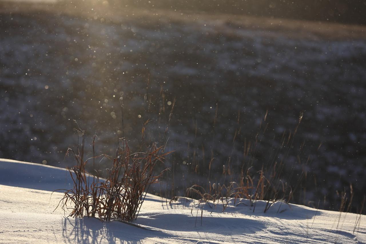 画像: ダイヤモンドダスト ※天候により見られない場合がございます