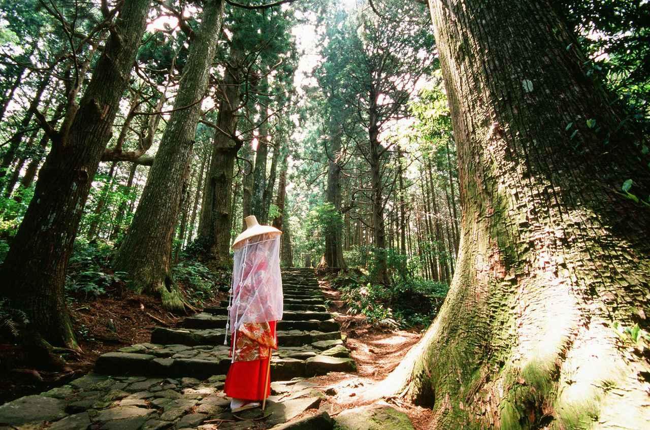 画像2: 旅を通して新たな興味を発見したり、知識を深めたり