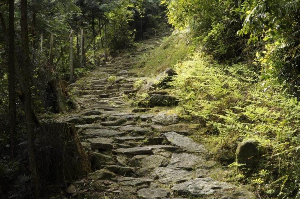 画像: 熊野古道の峠をめぐる「TOUGE」~伊勢から熊野へ峠にフォーカスした歴史と情緒のシリーズ旅~|クラブツーリズム
