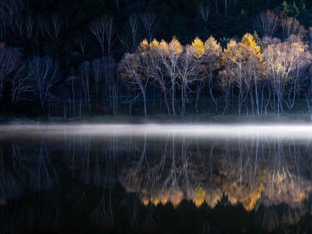 画像1: 浅井武講師の撮影写真