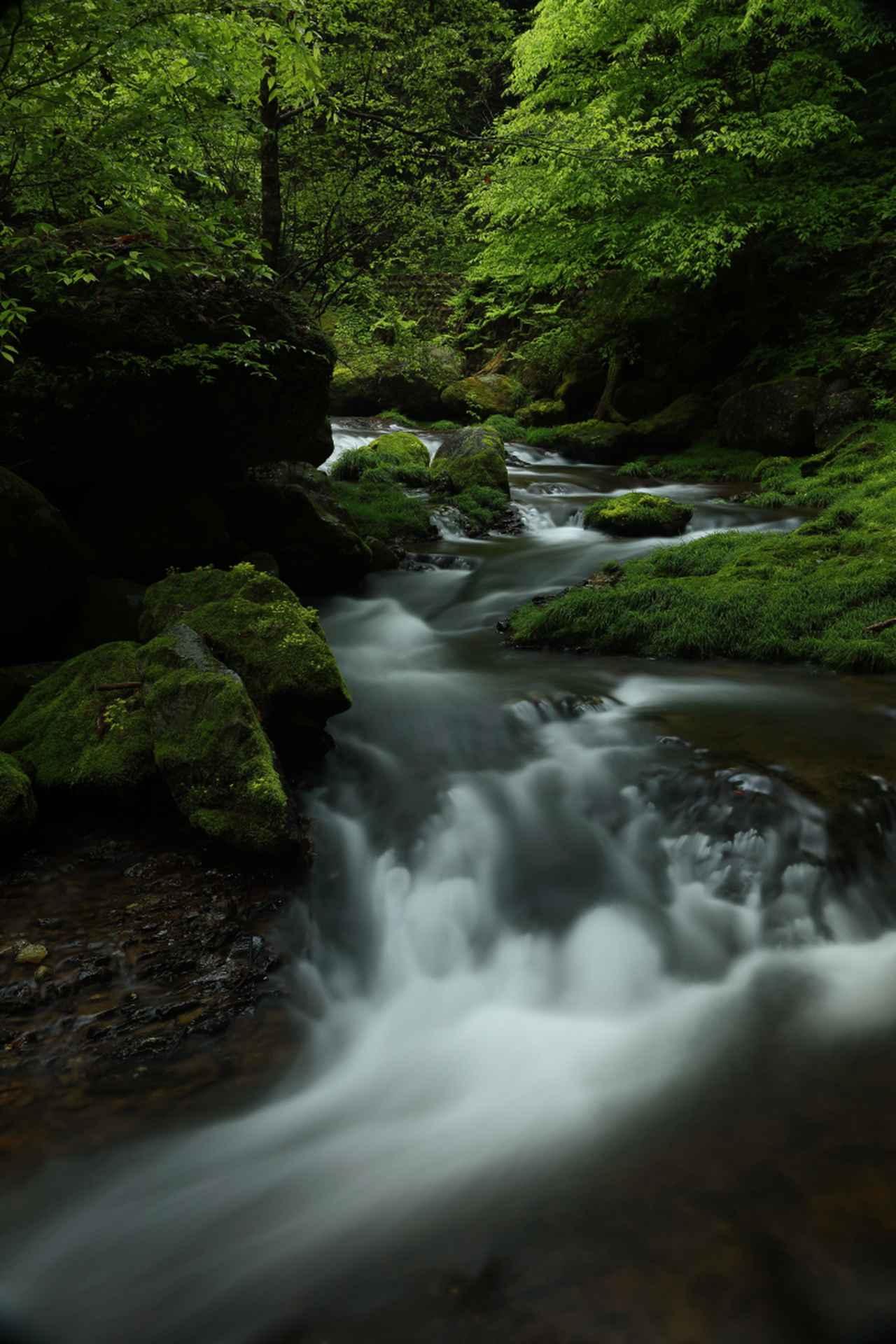 画像2: 青山佳弘講師の撮影写真