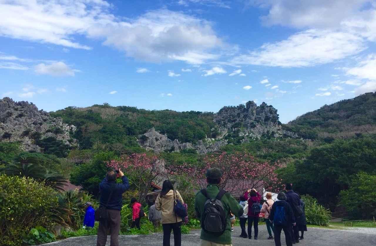 画像: 亜熱帯の木々に囲まれた巨大な岩山は圧巻です