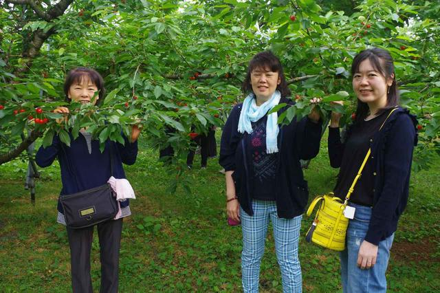 画像: 寒河江のさくらんぼは甘くて美味しいですね! (神奈川県からご参加 栗原様ご一行)