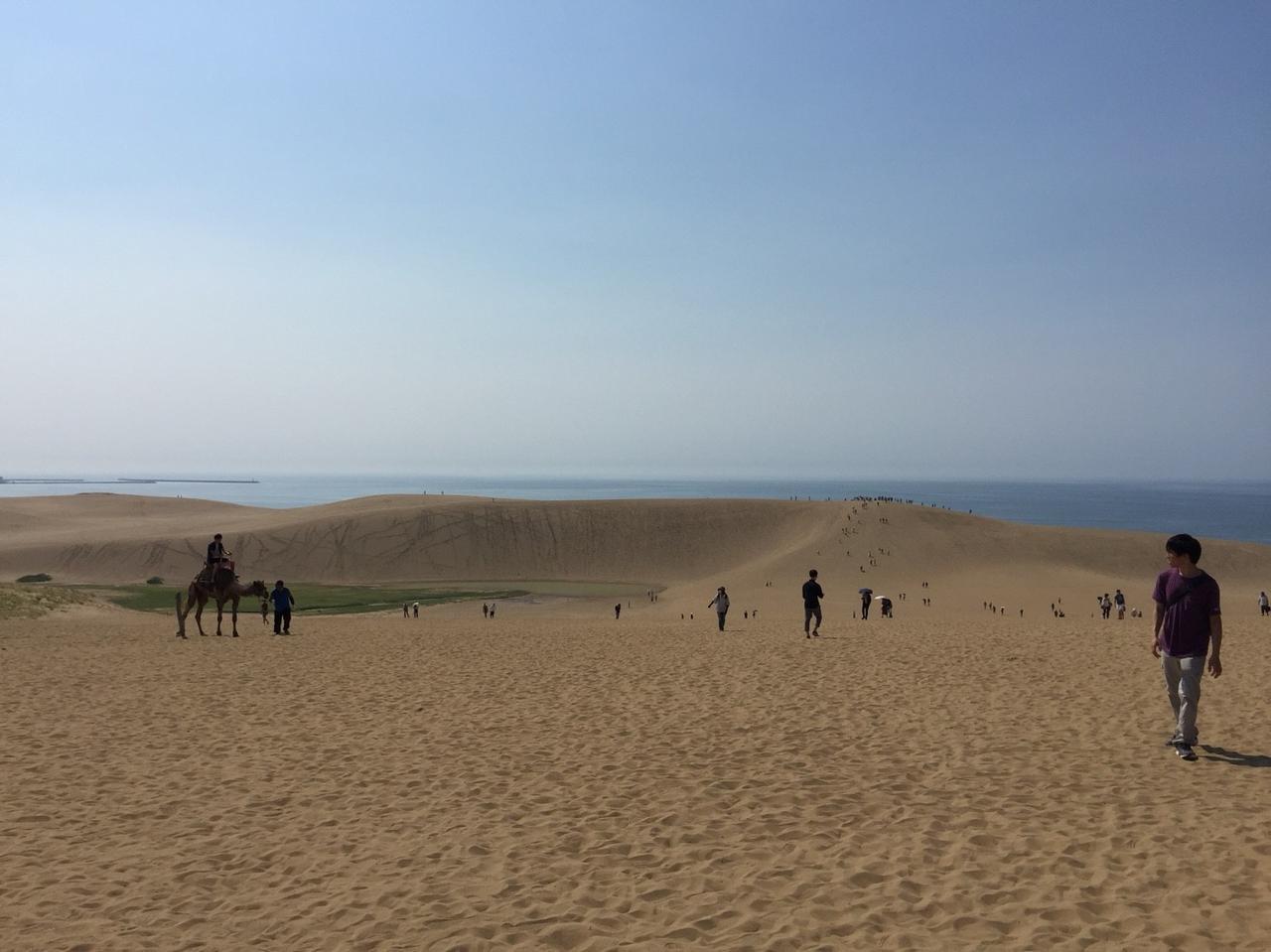 画像: 2日間共に天候に恵まれた、真夏の鳥取砂丘