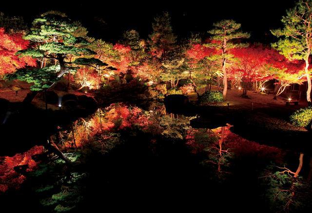 画像: 枯山水の庭ライトアップ