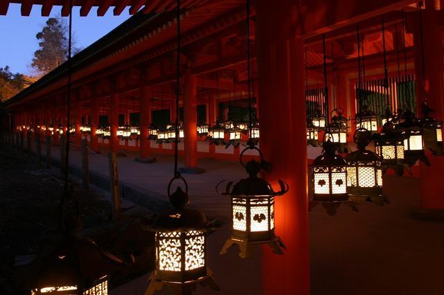 画像: 東回廊と西回廊の釣燈籠に灯を灯しました。 鹿のモチーフなど様々な釣燈籠に灯がともり幻想的な雰囲気の回廊