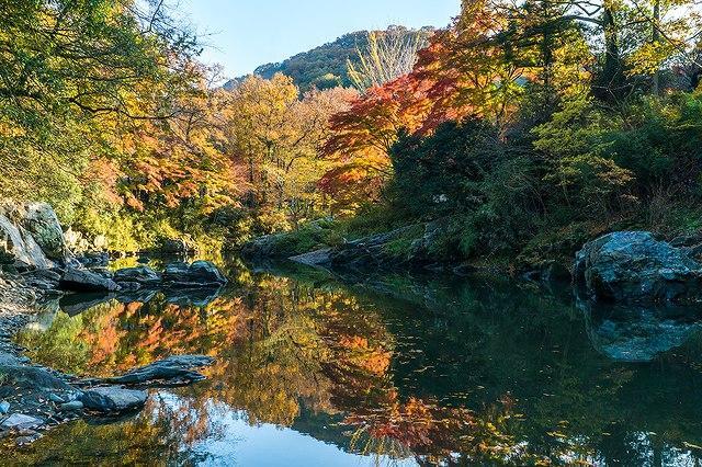 画像: 【池袋出発】11月18日(日)・12月2日(日) 出発> 『織りなす紅葉と清流「嵐山渓谷」 旅するレストラン「52席の至福」で優雅なひととき』<四季の華> |クラブツーリズム