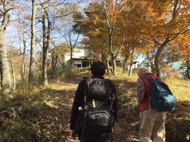 画像4: 【あるく・ハイキングツアー】11月9日~12日出発 紅葉の富士青木ヶ原樹海と紅葉台・三湖台ハイキングについて