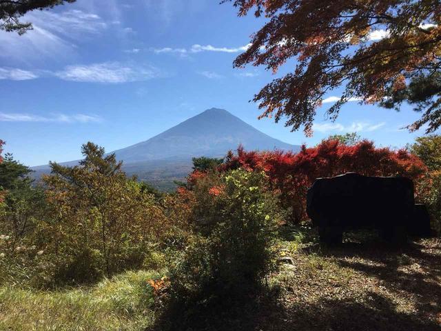 画像6: 【あるく・ハイキングツアー】11月9日~12日出発 紅葉の富士青木ヶ原樹海と紅葉台・三湖台ハイキングについて