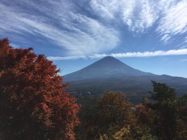 画像5: 【あるく・ハイキングツアー】11月9日~12日出発 紅葉の富士青木ヶ原樹海と紅葉台・三湖台ハイキングについて
