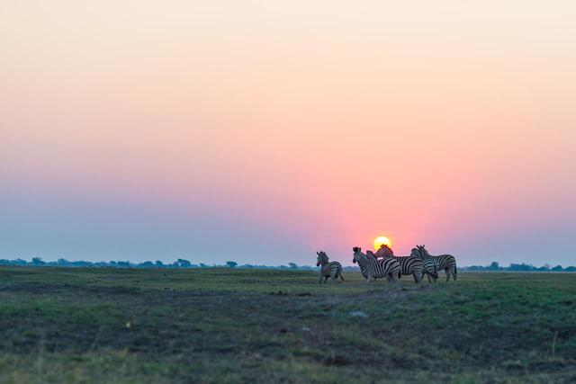 画像: チョベ国立公園の夕日