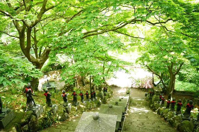 画像: 新緑の大山寺(イメージ)