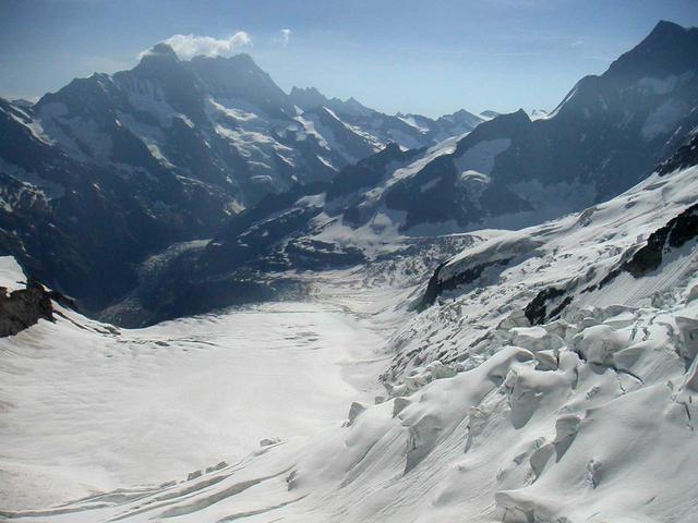 画像: アレッチ氷河