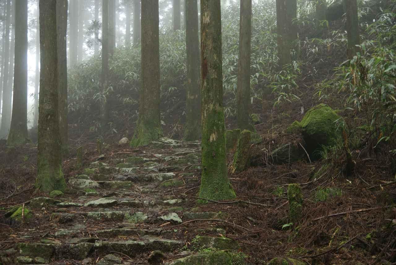 画像: 熊野古道・大雲取越