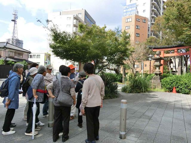 画像: 氷川神社参道の入り口、一の鳥居前にて