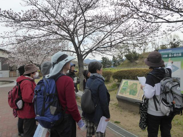 画像1: 【関西エコースタッフデスク】春の訪れを感じながらガイドの案内で古代ロマン溢れる古市古墳群めぐり