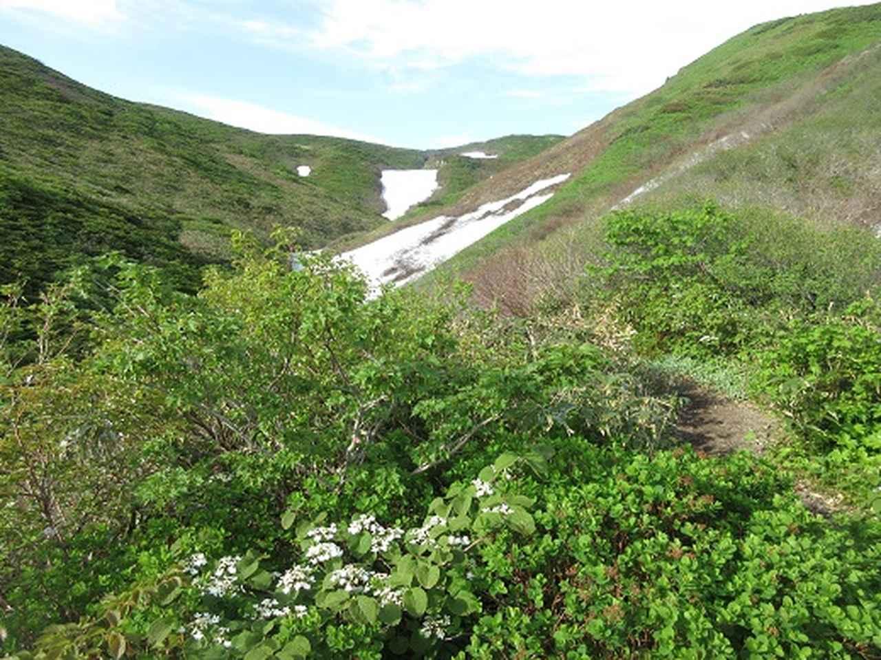 画像2: 【山旅会】秋田駒ヶ岳