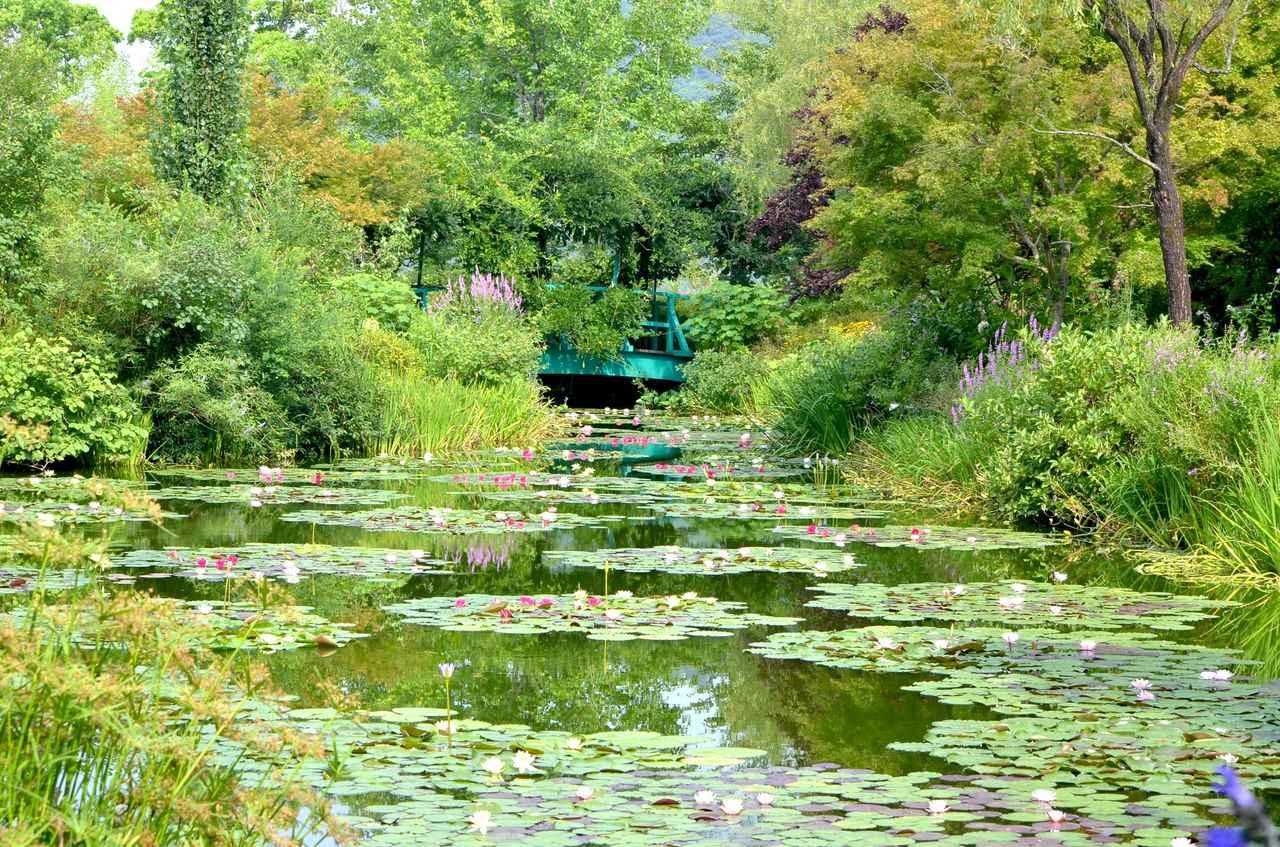 画像: 「クロード・モネ」のジヴェルニーの庭を再現した北川村「モネの庭」マルモッタン(写真は「水の庭」)