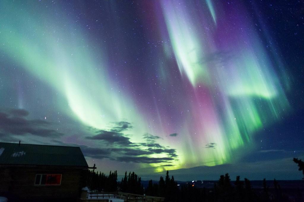 画像: 【E2188】<おひとり参加限定の旅> 『1名1室確約 日本航空チャーター直行便利用!アラスカ大自然の短い秋 7日間』 出発保証!9月8日限定出発!|クラブツーリズム