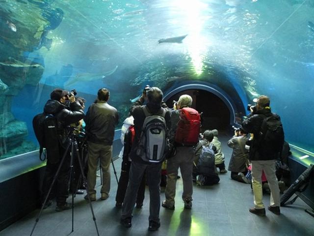 画像3: 【写真撮影の旅】貸切撮影会の開催報告とご案内