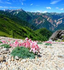 画像: 【中部・東海発】秋から始める登山教室・ツアー・旅行 あるく国内 クラブツーリズム