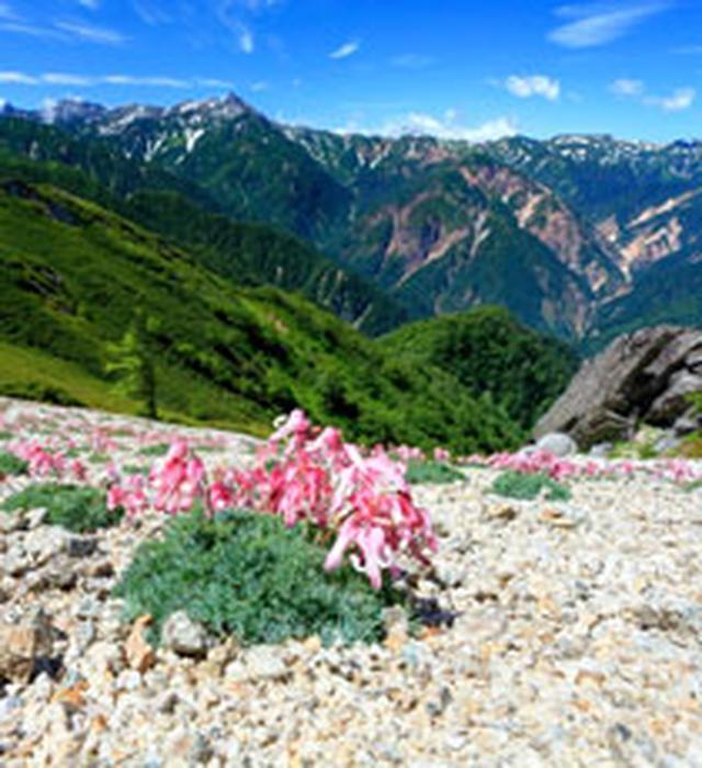 画像: 【中部・東海発】秋から始める登山教室・ツアー・旅行|あるく国内|クラブツーリズム