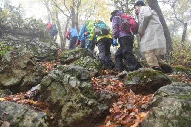 画像: 安全な歩き方を心がけながら坂道を上る旅仲間たち
