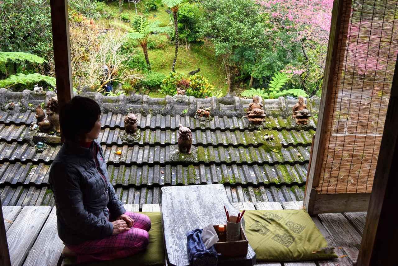 画像: 自由行動時間には、本部半島の緑の濃い山の中にある喫茶店へ