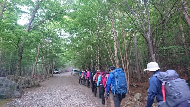 画像: まずは登山口を目指して林道を1時間程歩きます