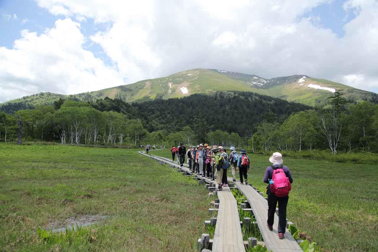 画像: 至仏山を眺めながら尾瀬ヶ原をハイキング