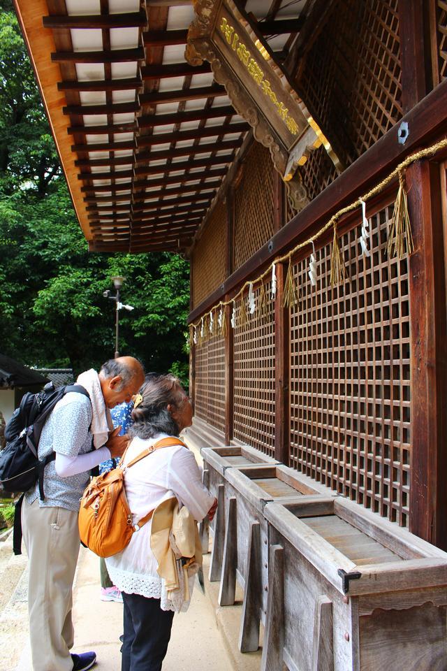 画像: 宇治上神社で参拝