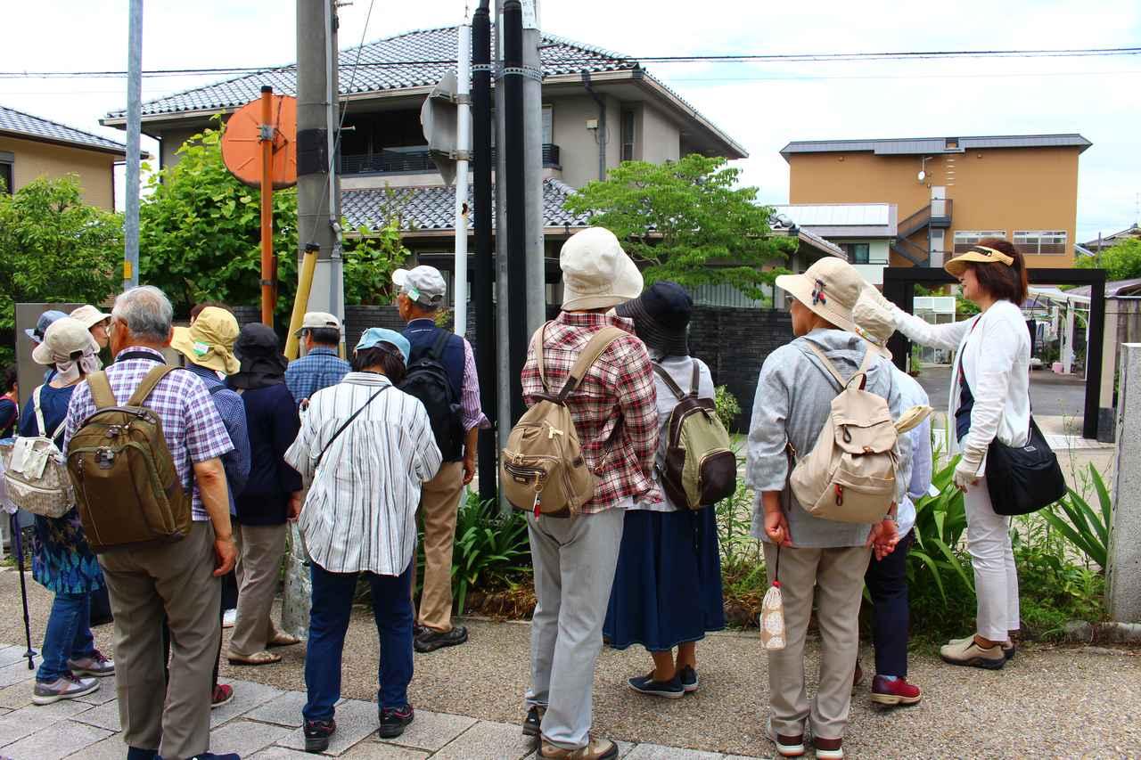 画像: 宇治上神社に向かう途中にある「さわらびの道」で話を聞く旅仲間