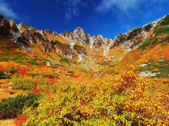 画像: 国内 秋 紅葉・祭り・花火ツアー・旅行|写真撮影の旅|クラブツーリズム