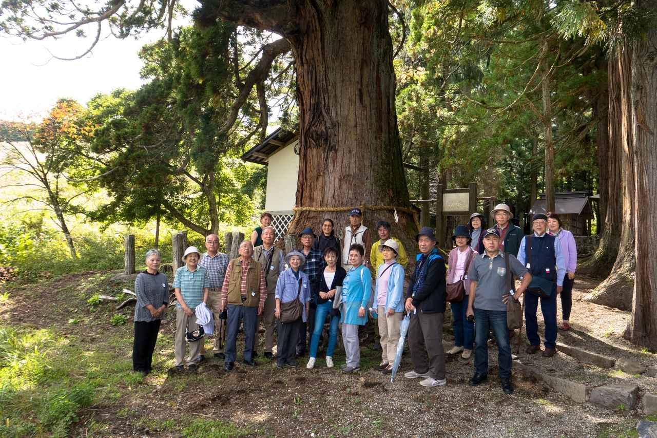 画像: 樹齢1000年を超える老杉の前で皆さん記念撮影