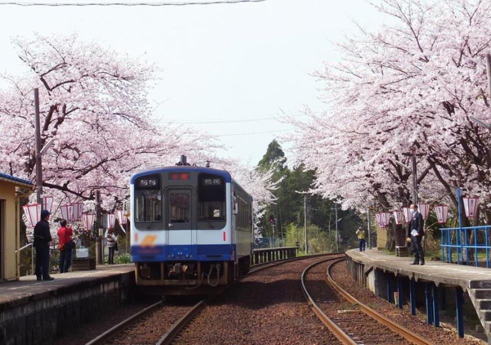 画像: 【関西発】国内 女性限定ひとり旅・ツアー クラブツーリズム