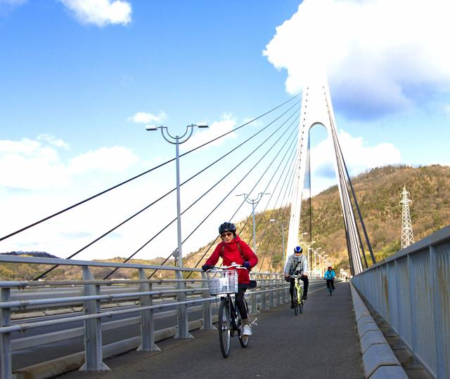 画像: 生口橋。全長790mの美しい斜張橋です。