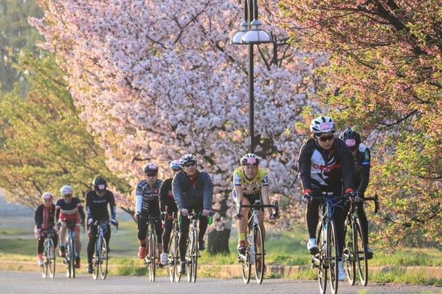 画像: サイクリングの旅・ツアー|クラブツーリズム