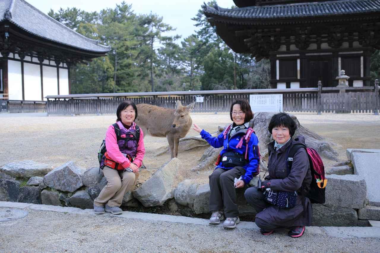 画像: 神様の御使いとなる鹿様と興福寺で記念撮影
