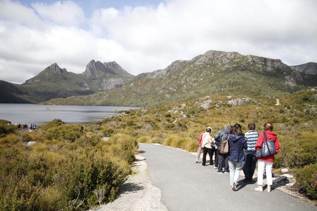 画像: タスマニアのシンボル、クレイドル山を眺めながら散策