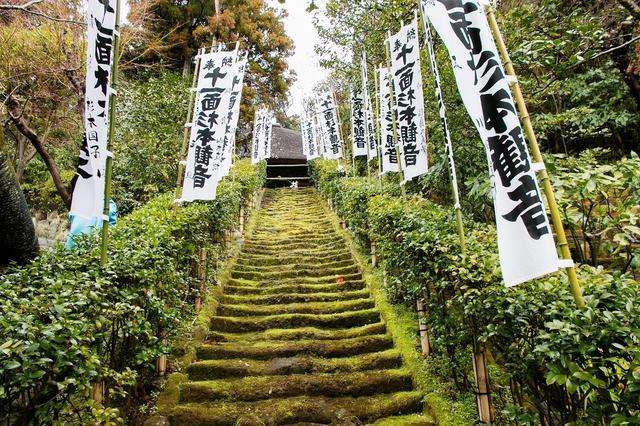 画像: 本堂までまっすぐのびる苔の階段。現在は立ち入り禁止のため、下から見上げて楽しみます