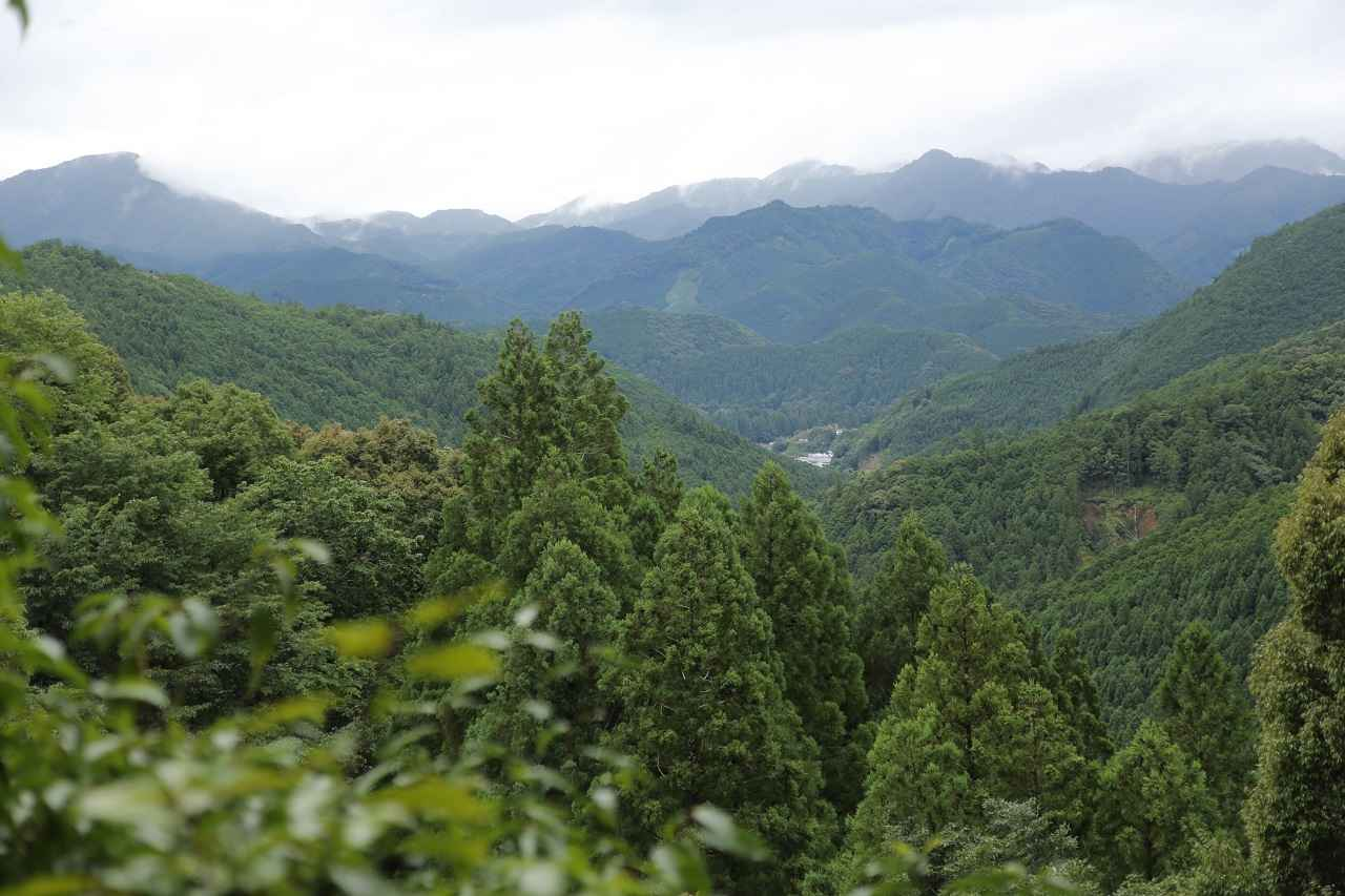 画像: 伏拝王子から熊野本宮大社方向を見下ろします。ゴール地点までもう少し