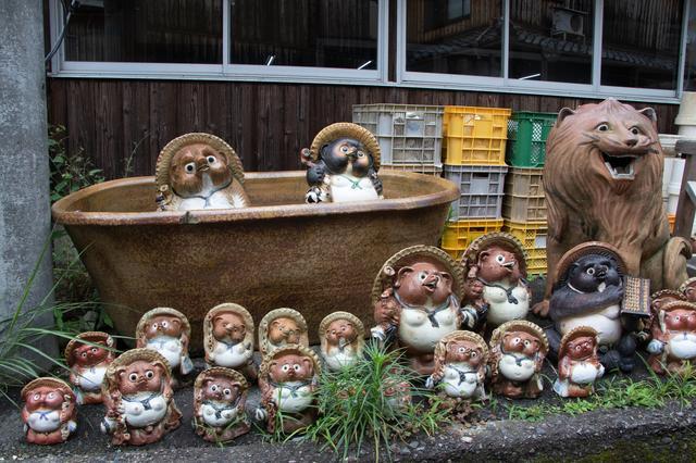画像: 「信楽陶芸村」には、約3000体のたぬきが居るのだそう