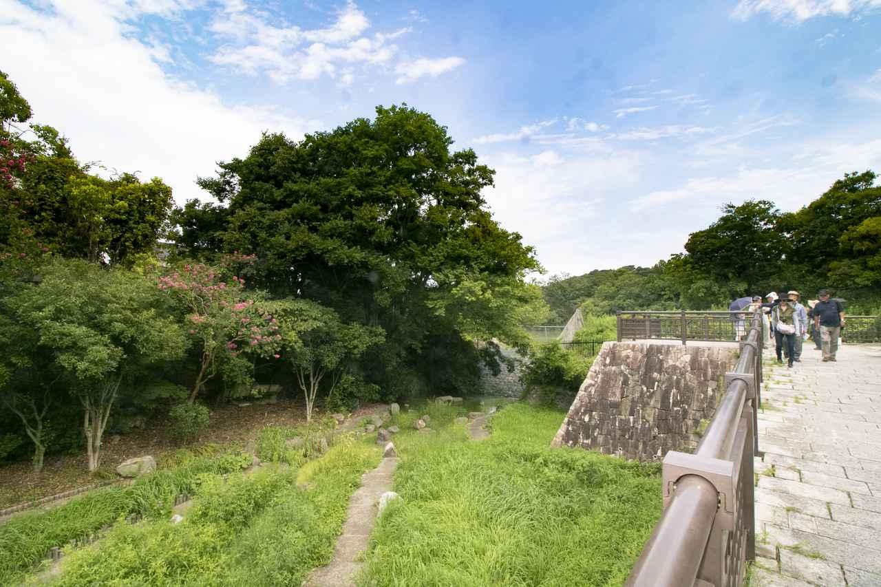 画像: 仁徳天皇陵の周囲は自然も豊か。「大きいなあ」と驚きの声があちこちから聞こえました