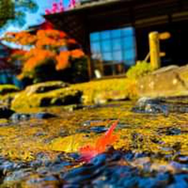 画像: 京の旅デザインセンター
