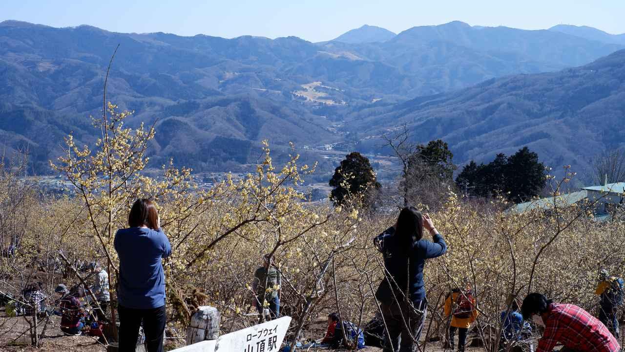 画像: 東ろうばい園(Fujifilm XT-200撮影)