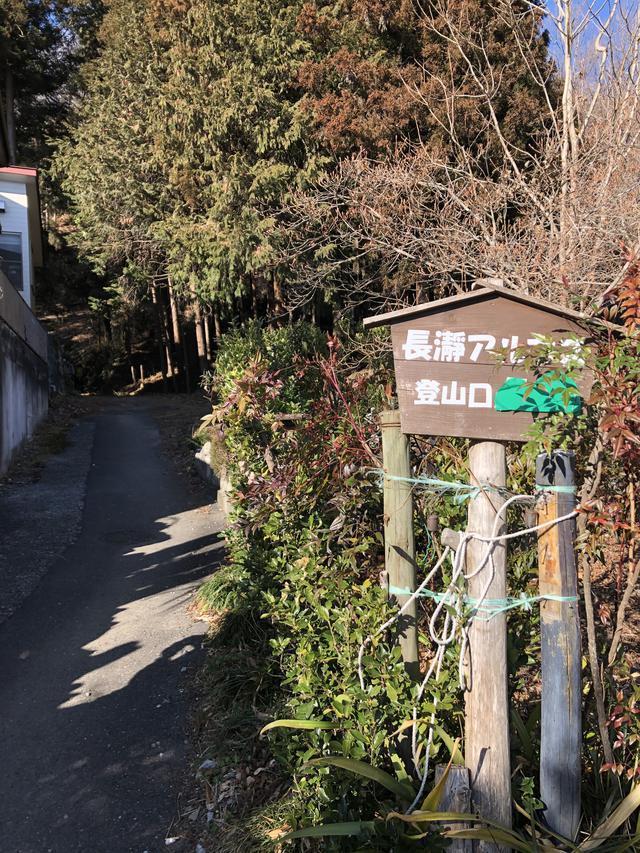 画像1: 宝登山の蝋梅(ロウバイ)|見頃・アクセス・登山道を紹介【登山・ハイキング初心者におすすめ】